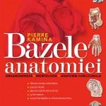 bazele-anatomiei
